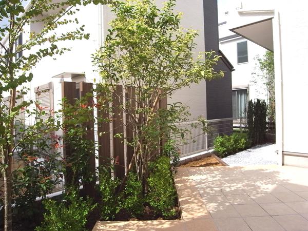 明るいタイルテラスのお庭 松戸市 写真